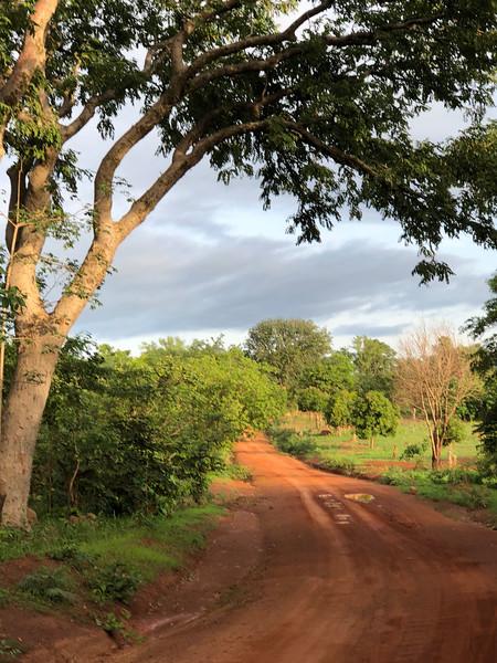 Guinea-102.jpg