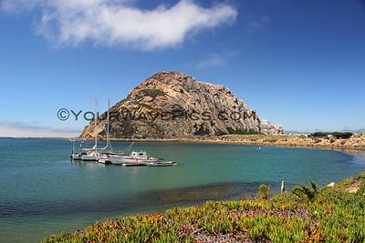 Best of Morro Bay