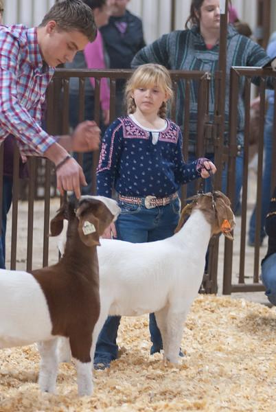 kay_county_showdown_goats_20191207-147.jpg