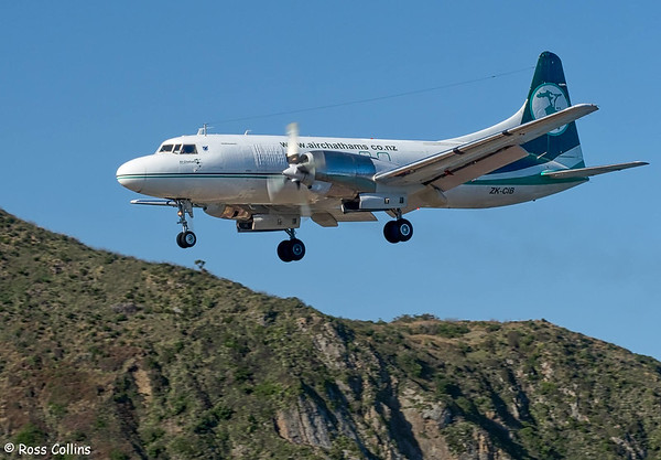Air Chathams at Wellington