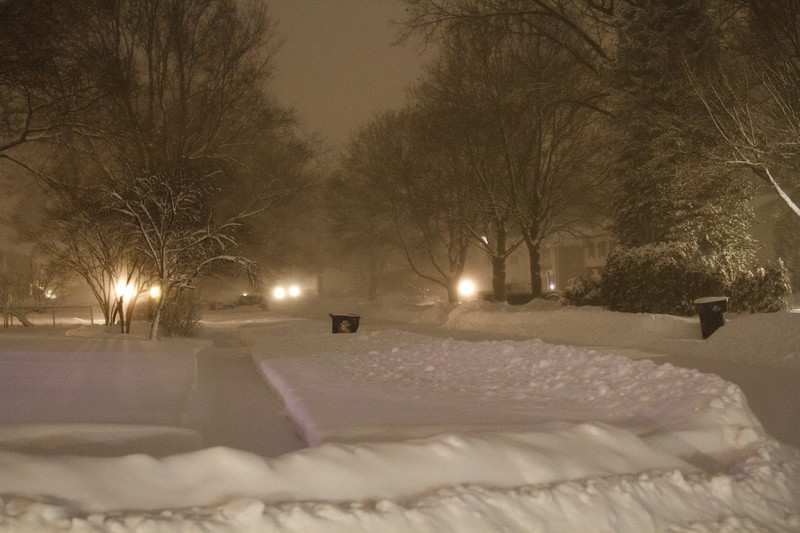 AIPPhoto-January2119-Image5.jpg