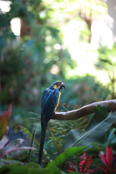 Kauai_D5_AM 245.jpg