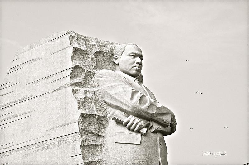 MLK 2011 3.jpg