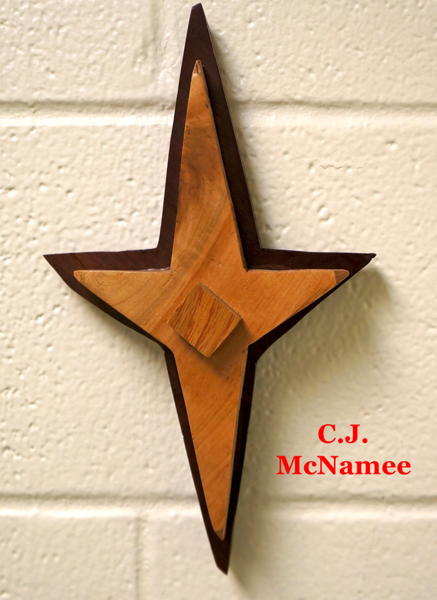 Lutheran-West-Advanced-Woods-2013-CJ-McNamee.png