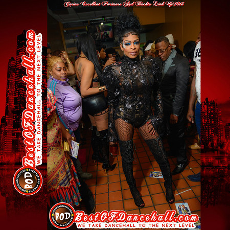 2-8-2015-BRONX-Carine Excellent Portmore And Backto Link Up 2015