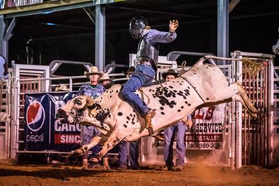 River Oaks Arena 2019 Rodeo
