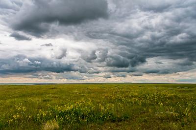 Grasslands National Park 2014