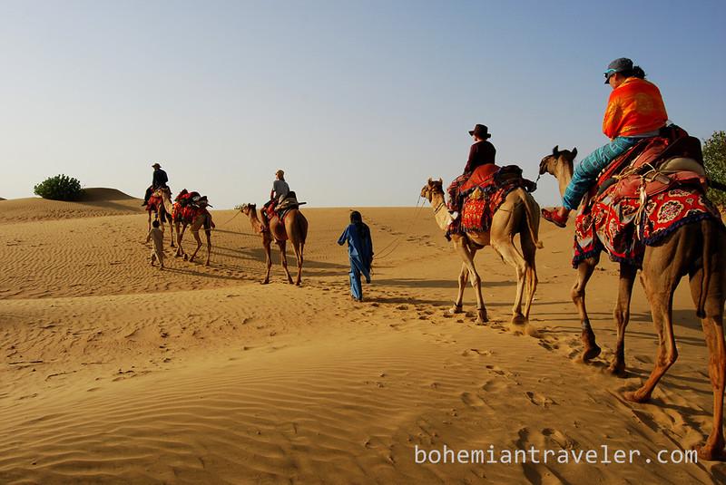 Thar desert camel train safari tourists (2).jpg