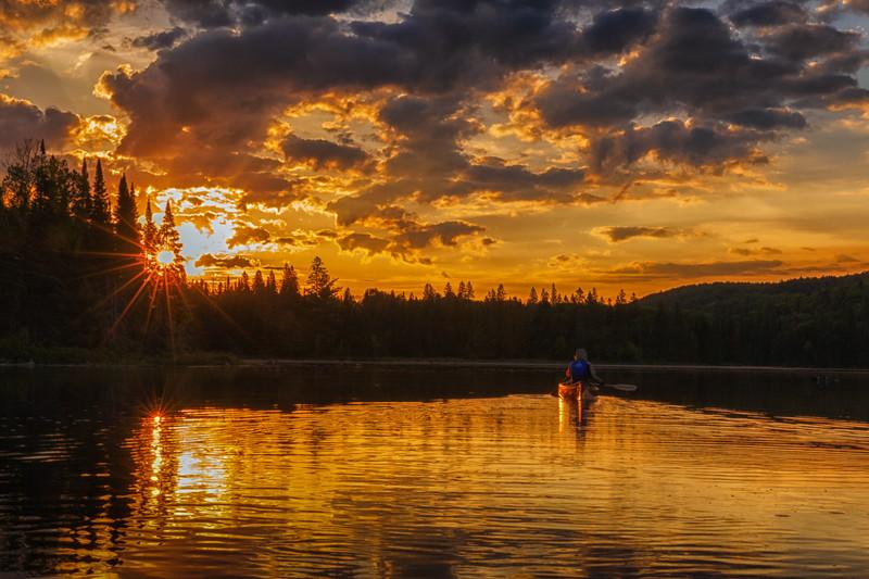 moose-safari-algonquin-park-ontario-25.jpg