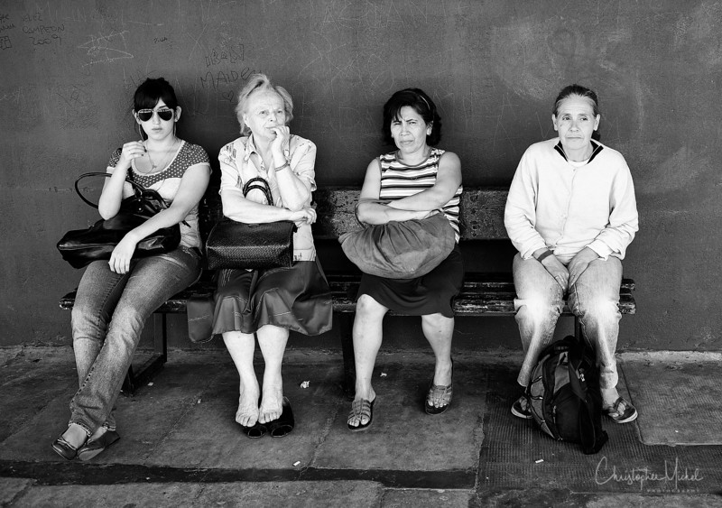 generations.jpg