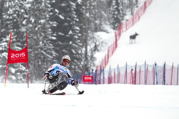 Ski Racing - IPC Alpine Skiing World Cup - Panorama, 2014