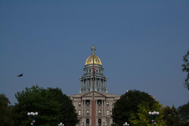DenverD120180729115.jpg