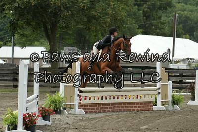 Ring III:  Pre Children's Horses