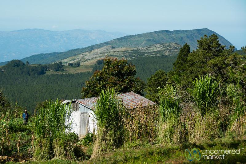 Haitian Farmhouse in the Hills