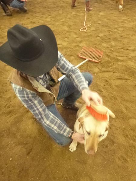 March 17 - 23, 2013 (Horsemanship Clinic)