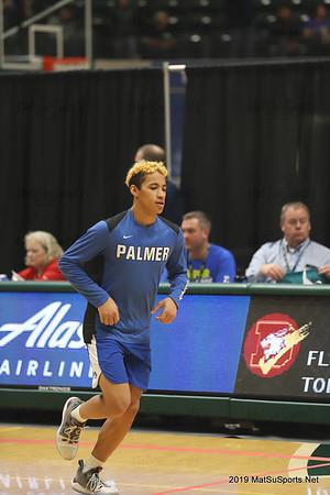 Palmer Vs. Dimond B V (State) 3-21-2019