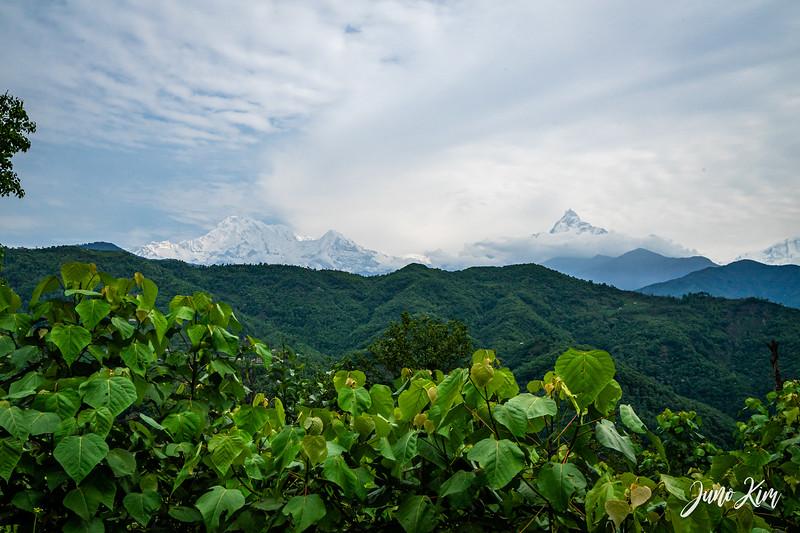 Annapurna__DSC2981-Juno Kim.jpg