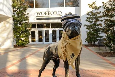 Terrier Bronze Hat & Scarf
