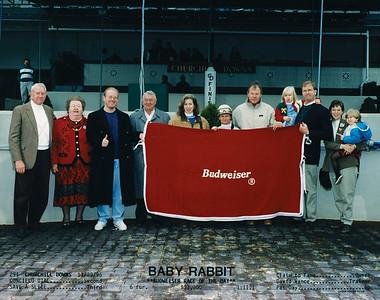 BABY RABBIT - 11/29/1996