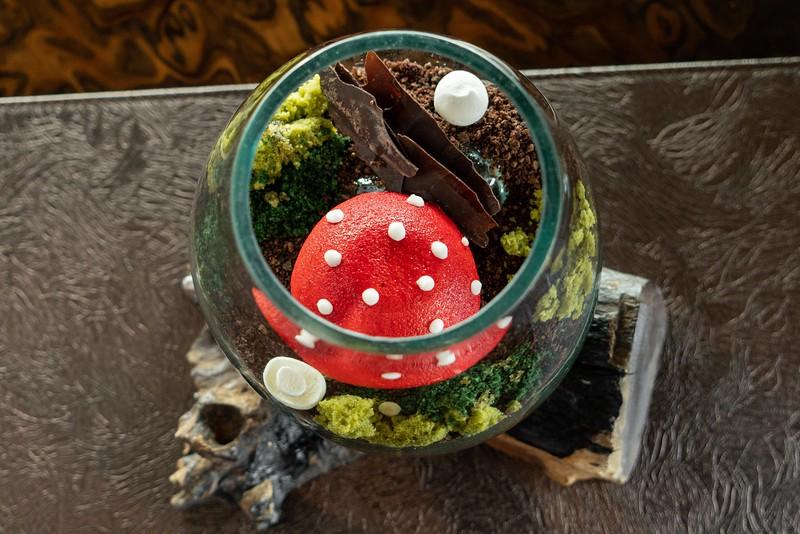 Pratt_Ascend_Mushrooms_020.jpg