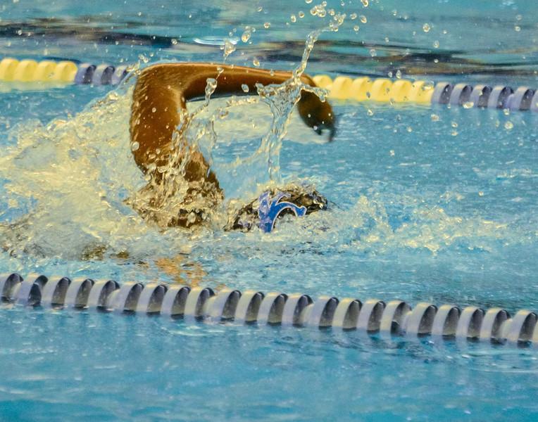 Swim Meet 11-09-13 (83 of 1544).jpg