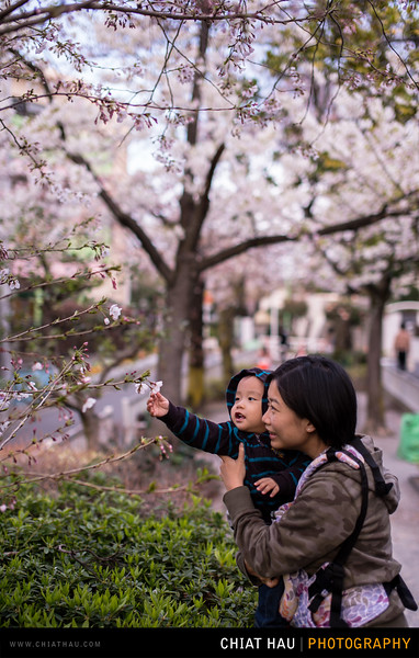 Japan_Tokyo_Apr_2016-173.jpg