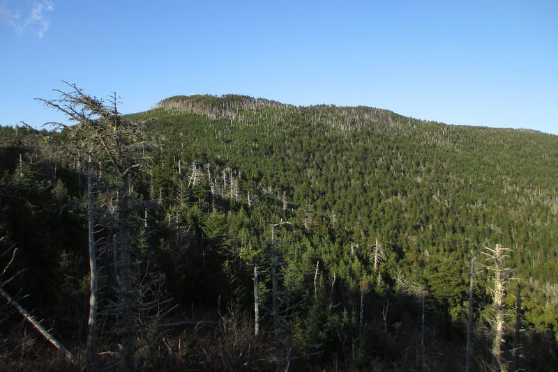 Mount Mitchell Campground - 6,300'