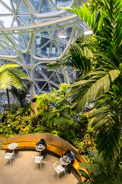 Pratt_Amazon Spheres_013.jpg