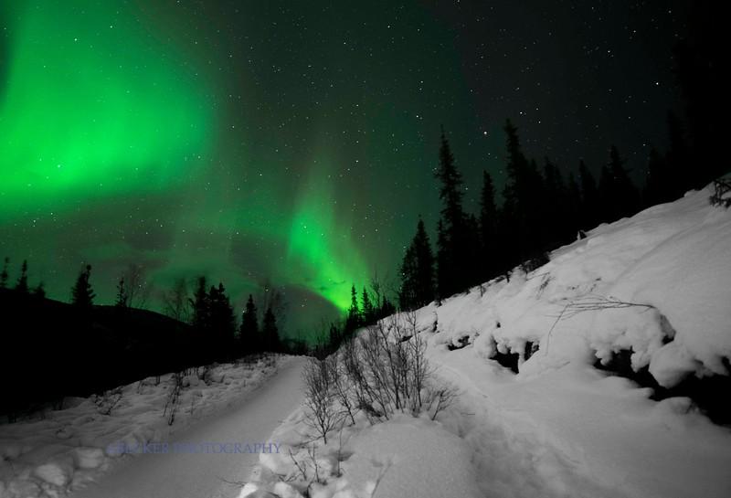 Road to Light.jpg
