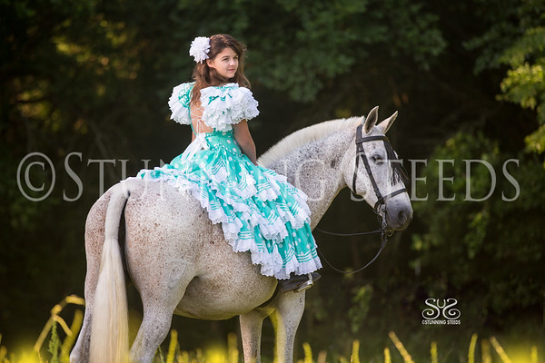 Epic Andalusians TX