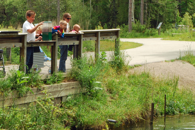 3543 Getting ready to feed the fish at the hatchery.jpg