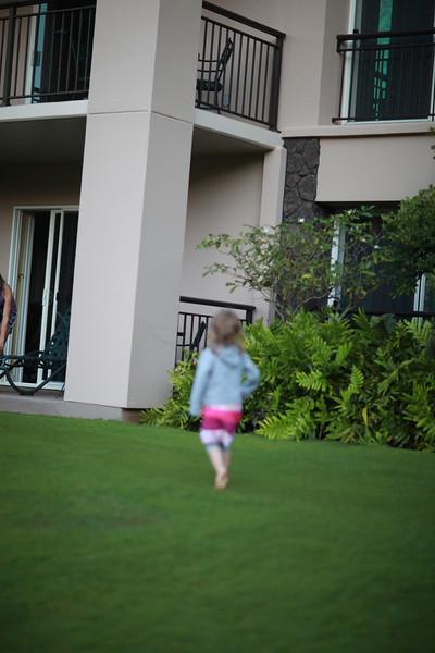 Kauai_D2_AM 028.jpg