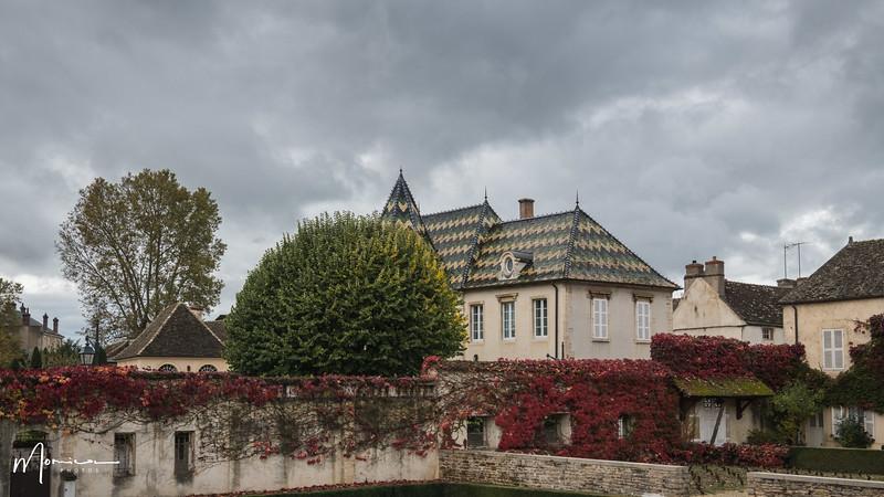 2019-10 - Burgundy Vacation-2923_edit.jpg