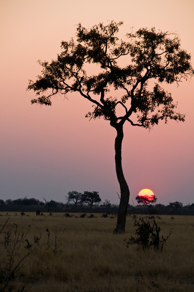 african scenery (20).jpg