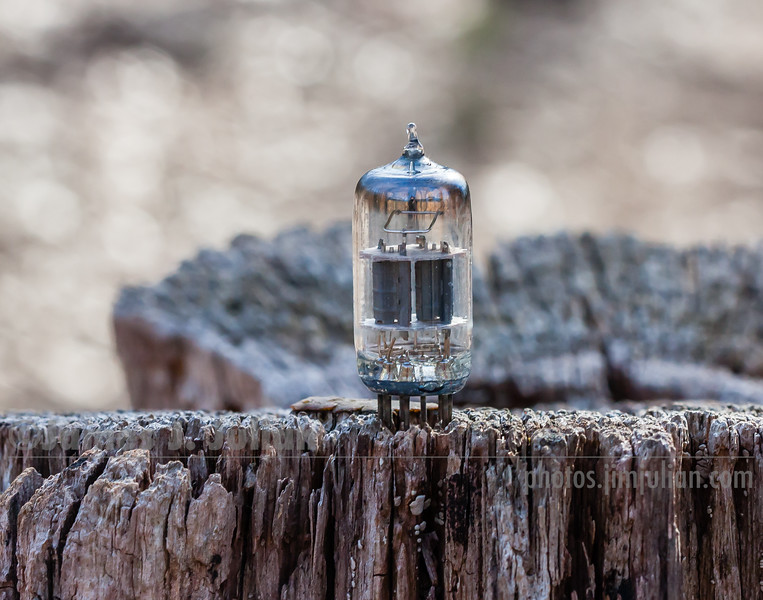 Vacuum Tube Lost in Nature 4