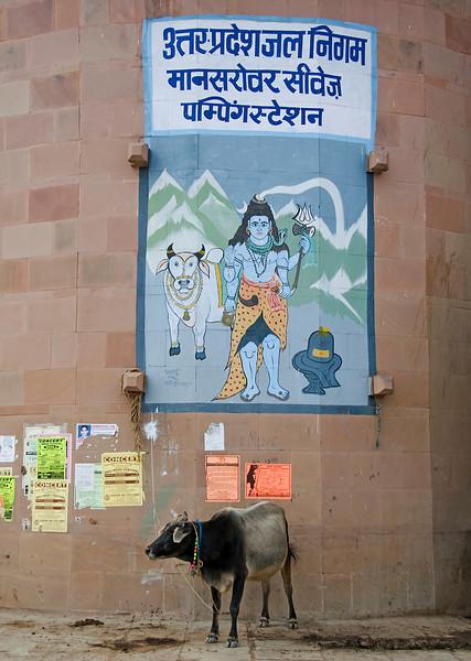 XH-INDIA-20100223A-303A.jpg