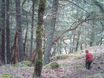 2012 Stewart Mountain 5