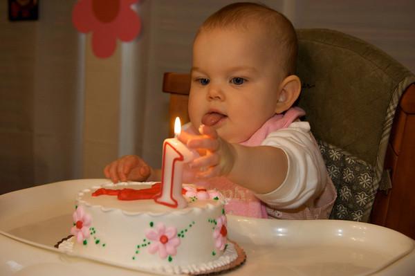 Anna's First Birthday