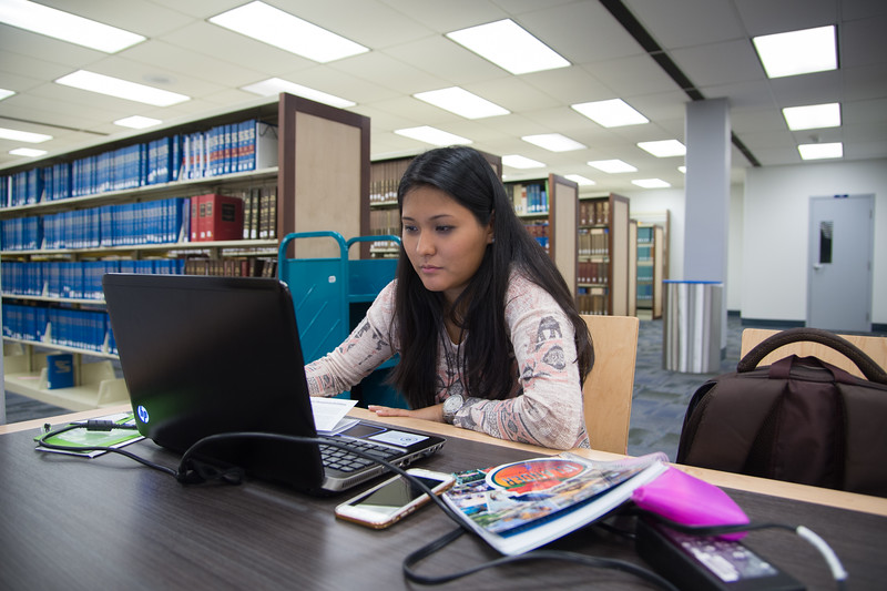 Paola Castillo working on her assignments at the library.