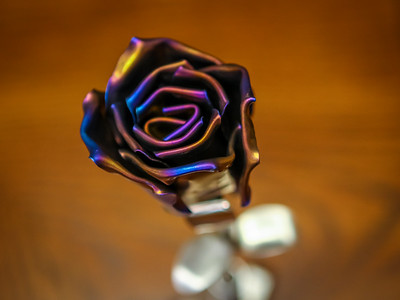 Roses - TI and COPPER