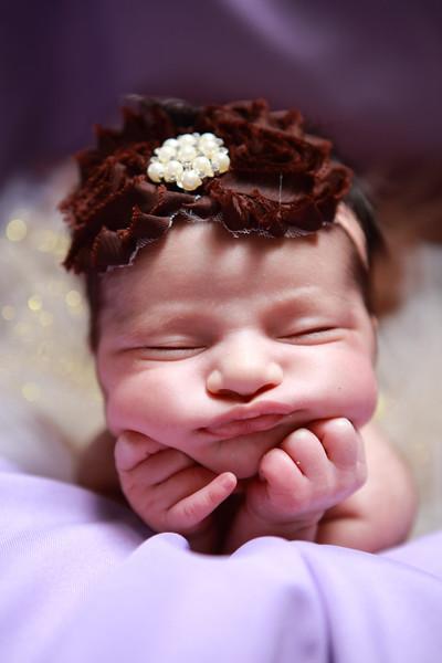 Aria Vargas Newborn