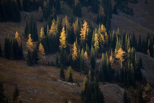 North Cascades Beta
