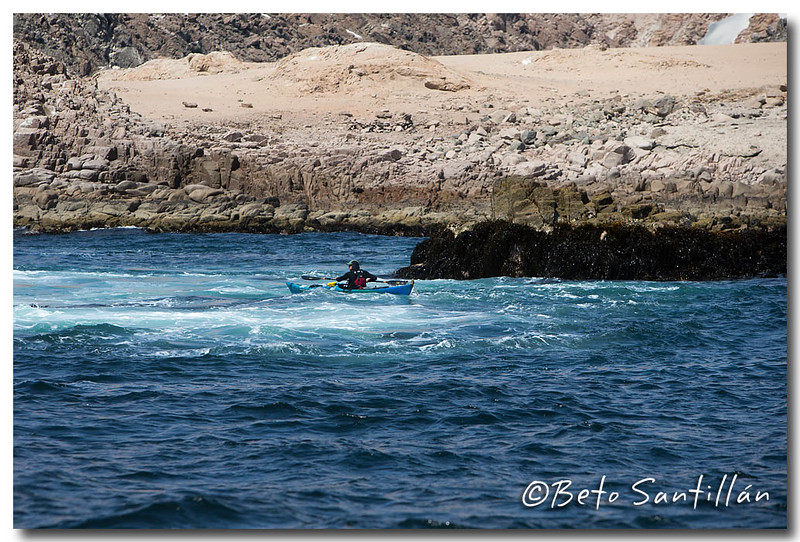 SEA KAYAK 1DX 050315-1272.jpg