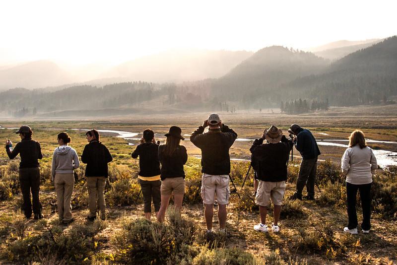 Yellowstone-8891.jpg