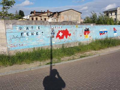 rujana 2011