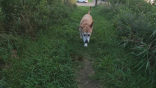 Riley's Visit Part 2 The Farms  8-1-21