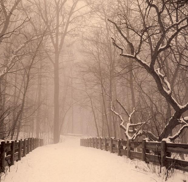 Winter's Walk, Palos Park, Illinois