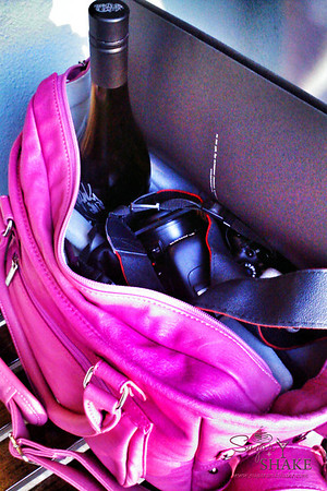 Epiphanie bags hold all kinds of precious cargo! © 2013 Sugar + Shake