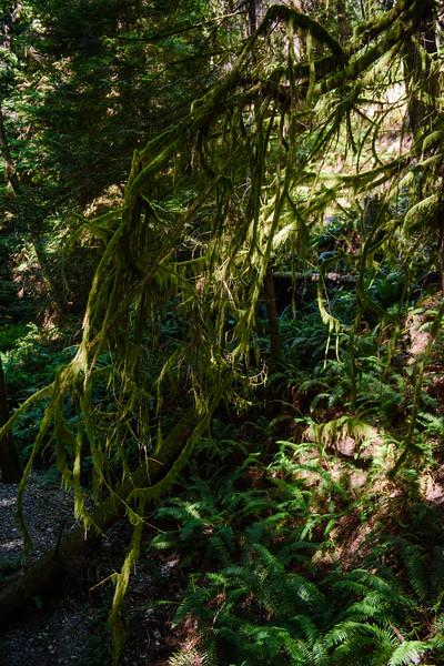 20160825 Ludlow Falls 005.jpg