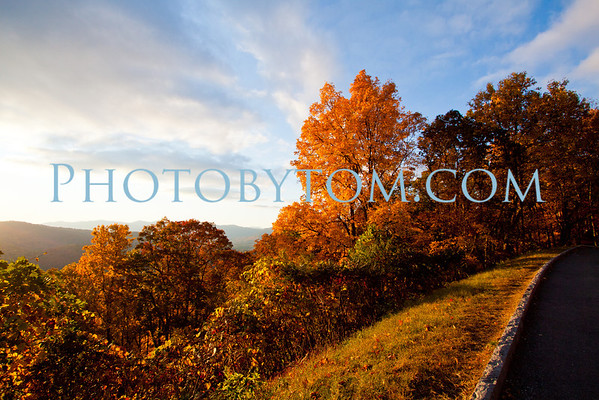 Fall Leaves on the Blue Ridge Parkway